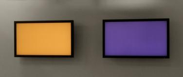 Fonds de vues (two). 2012, digital painting, two screens, computer program, physical random, Width 272 cm (variable depending on the screen) / Fonds de vues (deux). 2012, programme informatique, deux écrans plats, hasard physique véritable, largeur 272 cm (variable selon les écrans)