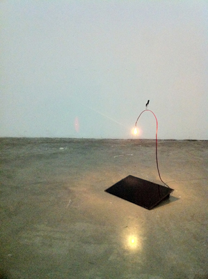 The lamp. 2011, solar panel, bulb, electrical wire, battery, variable dimensions. © Dimitri Mallet / The lamp. 2011, panneau solaire, ampoule, fil électrique, batterie, dimensions variables. © Dimitri Mallet