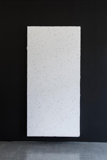 Baba relief 2, 2016, polystyrene board, plaster, spar-marine varnish, canvas, 250 x 120 x 18 cm © Mathieu Despeysses / Baba relief 2, 2016, tableau en polystyrène, plâtre, vernis pour bateau, canevas, 250 x 120 x 18 cm © Mathieu Despeysses